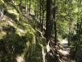 Wanderweg entlang der Schwarza