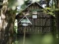 Mooshäuschen bei Schwarzburg im Wald