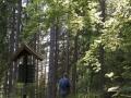 Wanderwege zum Griesbachfelsen im Schwarzatal